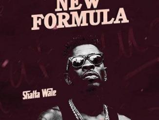 MP3: Shatta Wale - New Formula