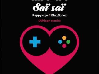 MP3: Elzo Jamdong Ft. Pappy Kojo, Blaqbonez - Sai Sai (African Remix)