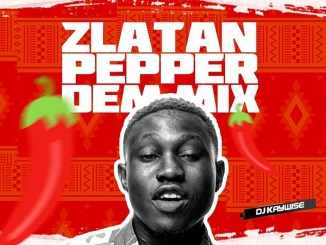 MIXTAPE: DJ Kaywise - Pepper Dem Mix