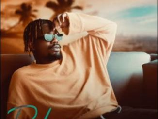 Lyrics: YCee - Dakun
