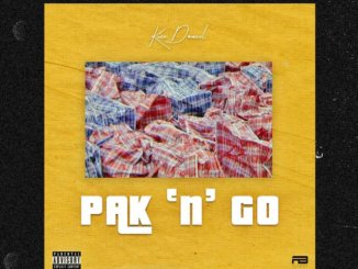 MP3: Kizz Daniel - Pak N Go