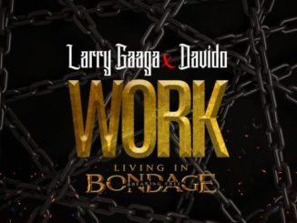 Lyrics: Larry Gaaga x Davido - Work