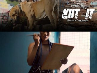 VIDEO: Wendy Shay - Kut It