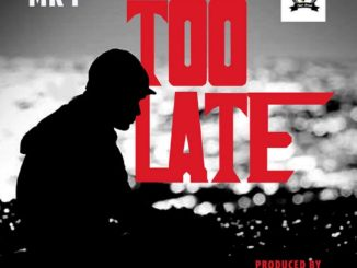 Lyrics: Mr. P - Too Late