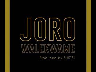 MP3: Wale Kwame - Joro