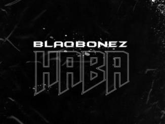 Lyrics: Blaqbonez - Haba
