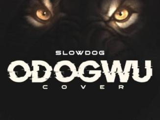 MP3: SlowDog - Odogwu (Cover)