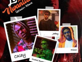 CKay ft. Frizzo - Love Nwantiti (German Remix)