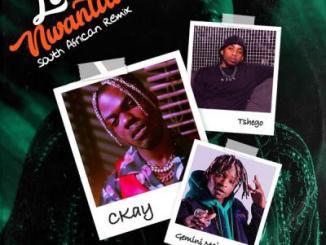 CKay ft. Gemini Major, Tshego - Love Nwantiti (South African Remix)