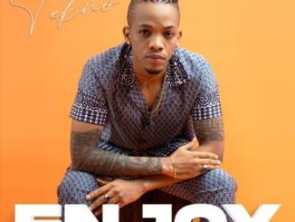 Tekno - Enjoy (prod. Blaise Beatz)