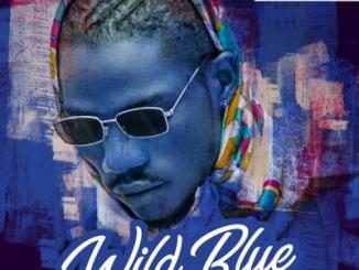 "Yonda ft. Saucekid - Bro CodeYonda Wild Blue Yonda – Wild Blue EP  Davido Music Worldwide recording artiste, Yonda teams up with Saucekid on this new single titled, ""Bro Code"". The Mobo-produced record, ""Bro Code"" is lifted from Yonda's forthcoming project, ""Wild Blue"" EP scheduled for released next month.  Moreover, ""Wild Blue"" EP consists of 8-tracks and features the likes of Saucekid, Davido and Mayorkun."