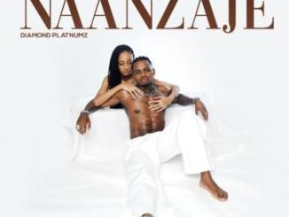 Diamond Platnumz - Naanzaje (Prod. by Lizer)