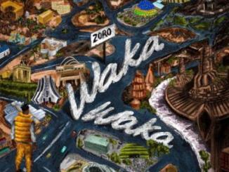 Zoro - Waka Waka (Prod. by Yung Willis)