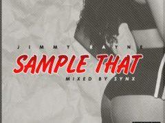 Jimmy Rayne - Sample Dat