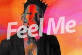 Music: Terry Apala - Feel Me