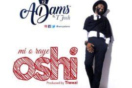 Music: VJ Adams - Mi O Raye Oshi ft. T-Josh