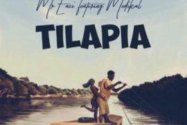 VIDEO : Mr. Eazi - Tilapia ft. Medikal