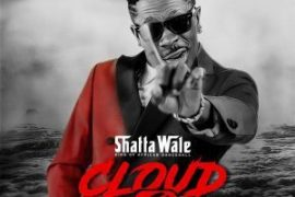 MP3 : Shatta Wale - She Is Lit