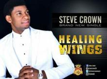 MP3 : Steve Crown - Healing Wings