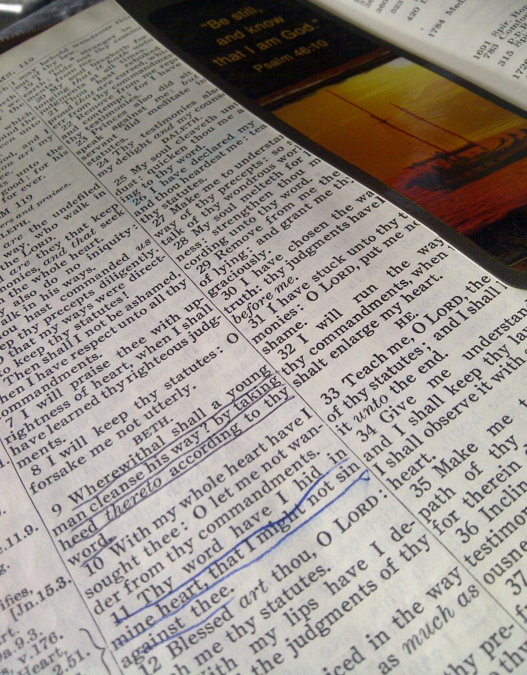Songdove Books - Author's Bible open to Psalm119-9