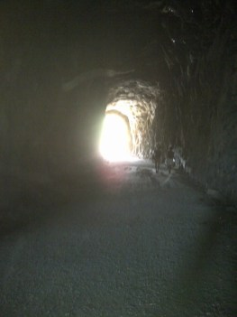 Songdove Books - Light at the end of the tunnel