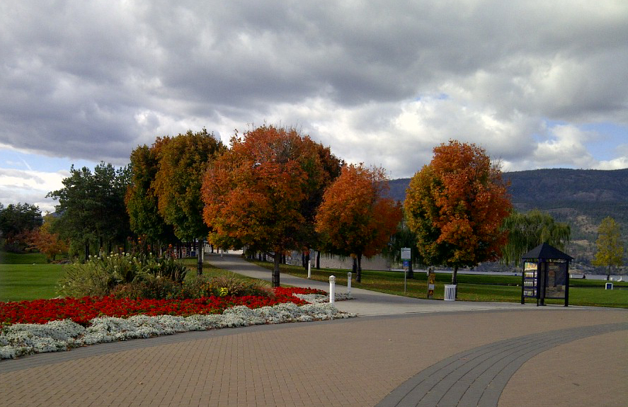 Songdove Books - Waterfront Park in Fall
