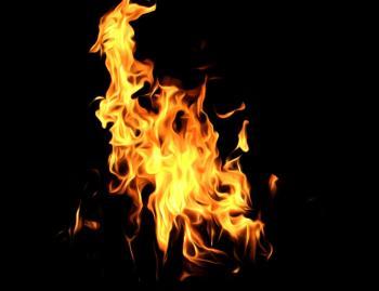 Songdove Books - Bonfire