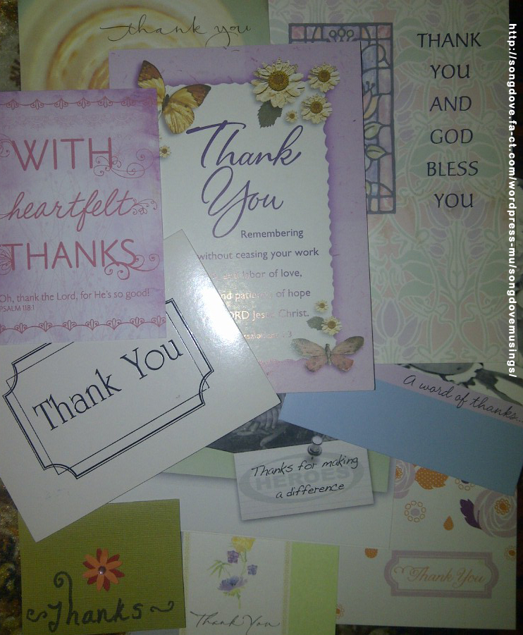 Songdove Books - Thank You