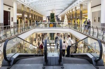 Songdove Books: Shopping gallery