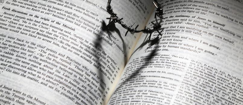 Songdove Books - Crown Heart