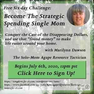 Become the Strategic Spending Single Mom