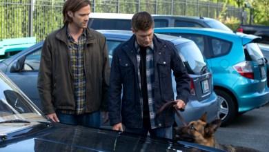 Photo de Supernatural – S09E05 «Dog Dean Afternoon» – Fiche Episode