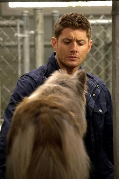 "Supernatural - S09E05 ""Dog Dean Afternoon"" - 6"