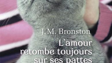 Photo of L'amour retombe toujours sur ses pattes de J.M. Bronston