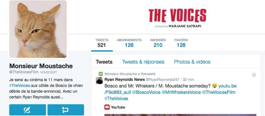 Mr-Moustache--Twitter