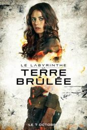 Le Labyrinthe -La Terre Brûlée2