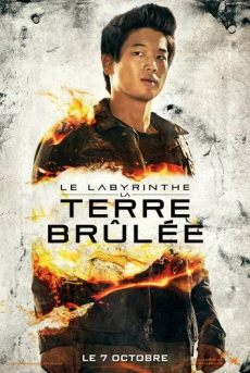 Le Labyrinthe -La Terre Brûlée5