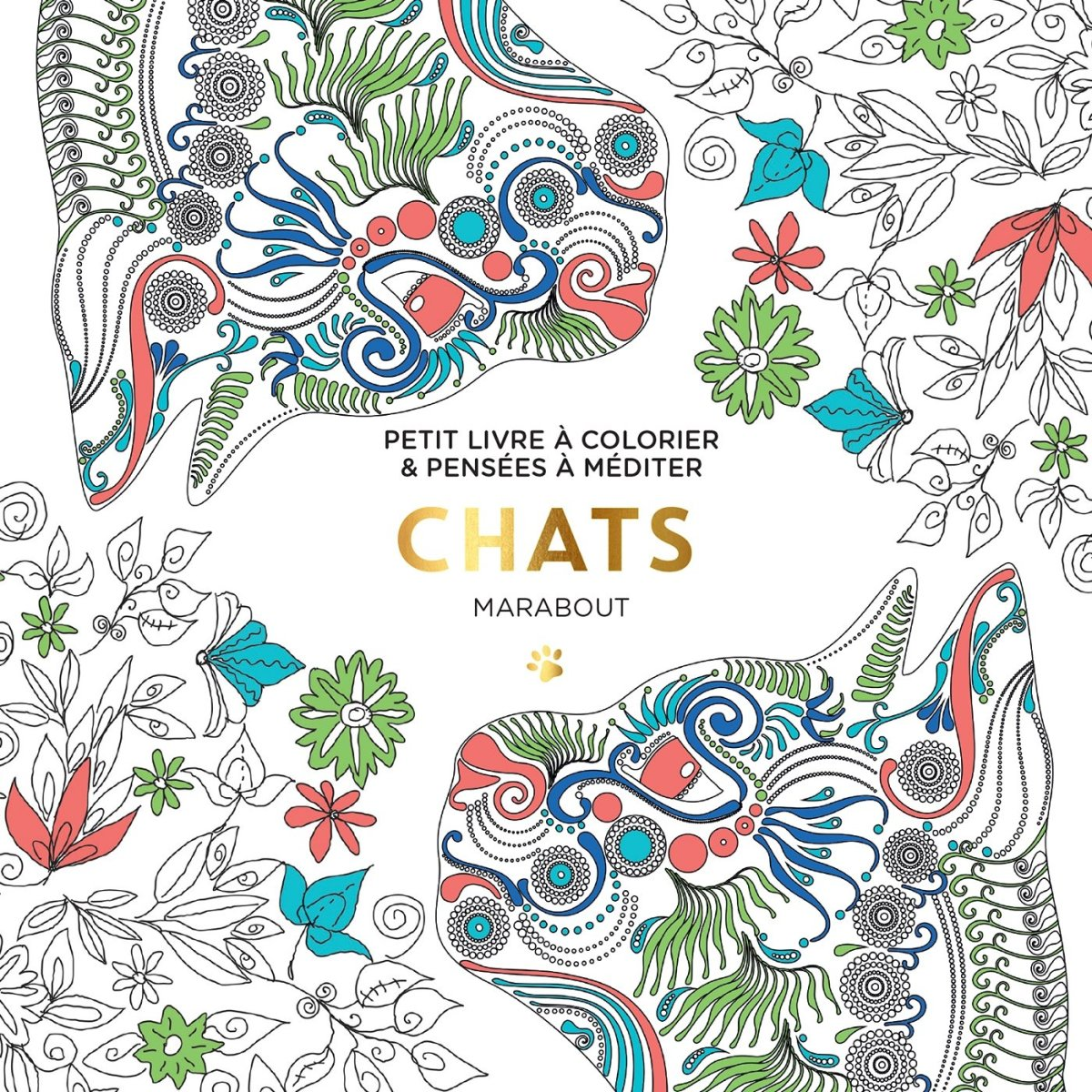 Le petit livre du coloriage chats - Chat a colorier ...