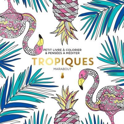 Petit livre à colorier - Tropiques