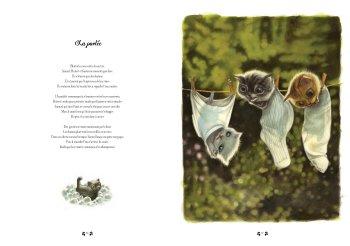 les facéties de chats Lacombe 3