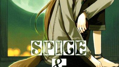 Photo of Spice & Wolf 2 d'Isuna Hasekura