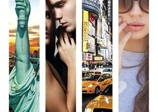Photo of Did I mention I need you ? d'Estelle Maskame