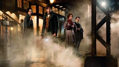 Photo of Les Animaux Fantastiques : retour dans l'univers magique de J.K. Rowling !