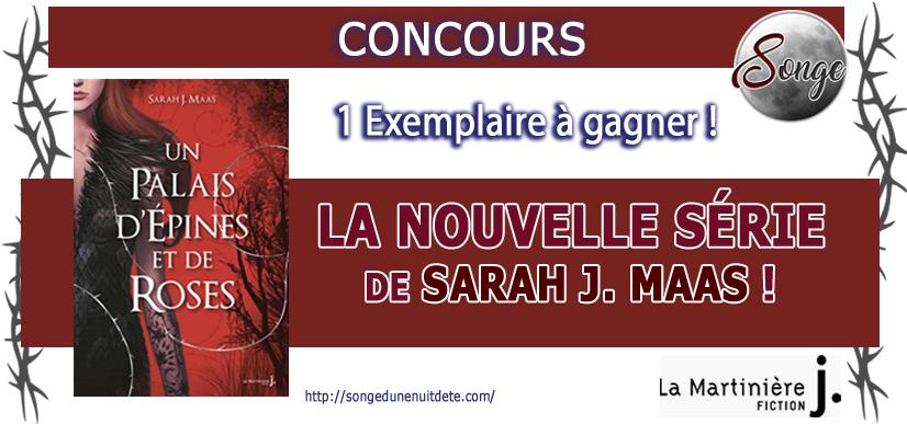 concours-un-palais-de-rose-et-depines-de-sarah-j-maas