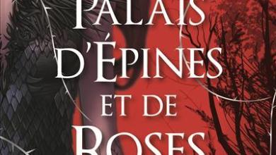Photo de Petit Zoom sur : Un Palais d'Épines et de Roses de Sarah J. Maas