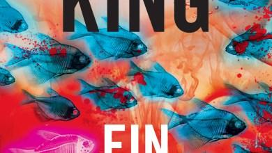 Photo de Fin de Ronde de Stephen King