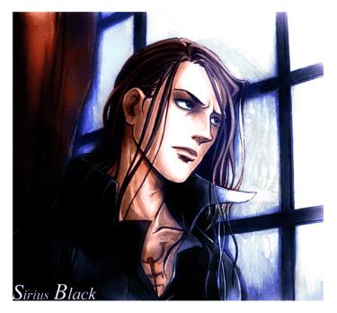 sirius_black_by_sor4
