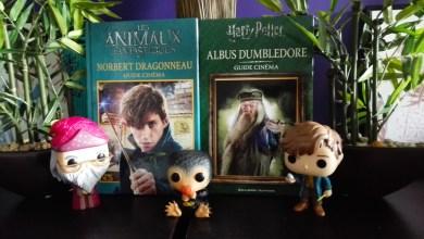 Photo de Les Petits Guides Cinéma : Albus Dumbledore & Norbert Dragonneau