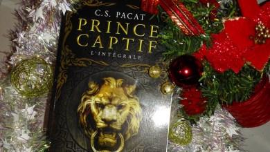Photo de Prince Captif – L'intégrale de C.S. Pacat