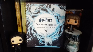 Photo de Wizarding World – Séances Magiques – Le sortilège du Patronus